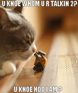 42-lolcat-funny-images-of-cats-with-toy-robo