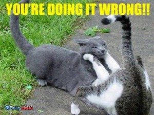 lolcat_doing_it_wrong