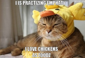 89-Lolcats-FUNNY-EASTER-cat-WITH-CHICKEN-hat-DISGUISED