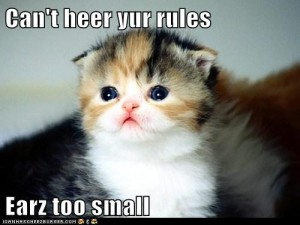 funny_cats_lol_cats_earz_too_small