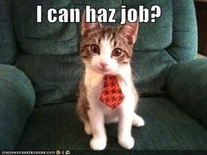 unemployed-lol-cat4