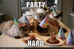 Lol-Cat-picture-Party-On