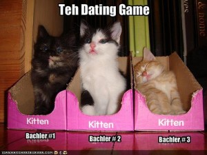 lolcatdating