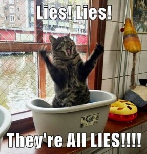 lolcat-lies