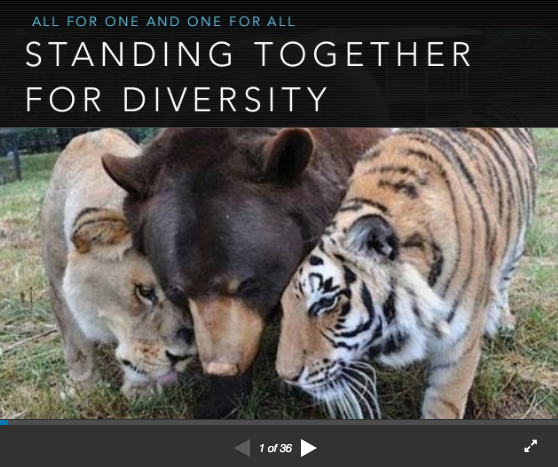 Poly Living Keynote: Standing Together for Diversity